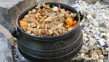 Buschkochen (1)