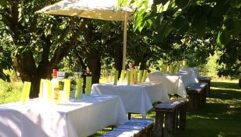 Feiern im Obstparadies Schuback (9)