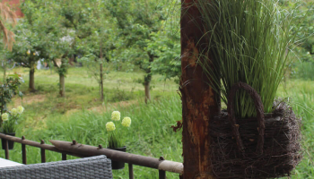 Feiern im Obstparadies Schuback (16)